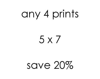Save 20% Custom Print Set, Fine Art Photography, Choose Any Four 5 x 7 Prints, Wall Art, 4 Photo Set, Wall Gallery