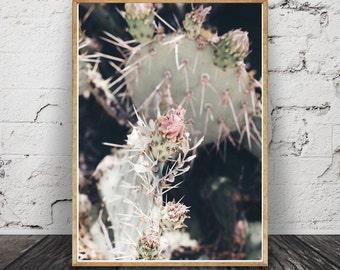Desert Rose Print, Joshua Tree Print, Desert Wall Art, Palm Springs