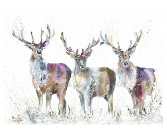 A3 Giclee Print Wildlife Highland  Stags watercolour art print by nicola jane rowles