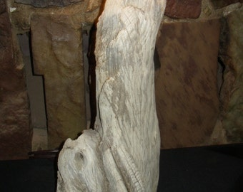 Beautiful all natural driftwood table lamp
