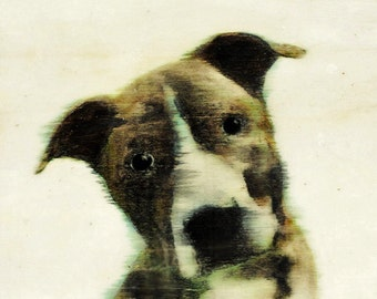 Giesbert - 6x8 (15 x 21 cm) original dog art