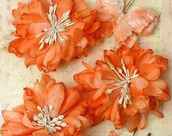 Petaloo Mums and Butterflies - Peach