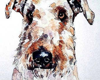 "Airedale  "" Original  Watercolour A3 (30*40cm/16*12 Inches)"
