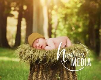 Newborn Baby Toddler Child Grass Forest Bed Tree Stump - Portrait Digital Backdrop - Photography Background - Tree Log Photo Prop - JPG