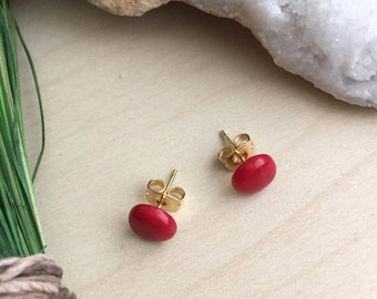 Red Coral Earrings on Gold Plated or Surgical Steel Posts | Hypoallergenic Coral Studs Gemstone Studs Sensitive Skin Safe Minimal Mordern