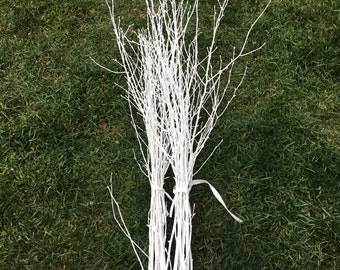 20 Painted White Birch Branches