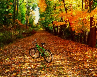 Landscape Photography, Nature Photography, Fall Foliage, Bicycling, Fall,Seasons, Colors