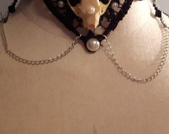 Real mink skull collar necklace