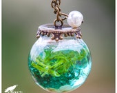 Underwater Ocean Seashell Terrarium Necklace, Ocean Necklace, Sea and Sand Vial Jewelry, Adventure, Nautical Jewelry, Tropical, Paradise
