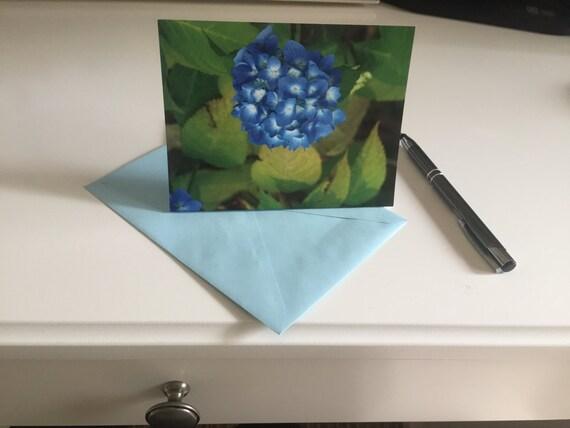 Hydrangea Greeting card, Hydrangea note card, 5.5x4.25 w/ envelope, blank card, flowers note card, Hydrangeas, Blue Hydrangeas, Cape Cod