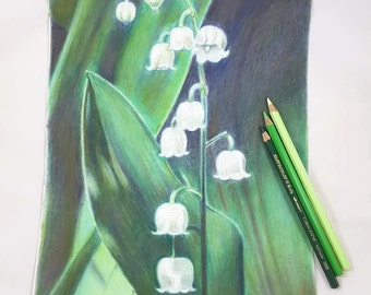Pencils drawing, bell flowers, original artwork by Francesca Licchelli, gift idea for garden lovers, romantic picture, bedroom decoration.