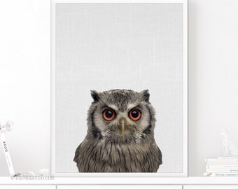 Owl Print, Owl Art, Owl Printable, Woodland Decor, Woodland Art, Woodland Animal, Nursery Animal, Printable Wall Art, Animal Photo Print