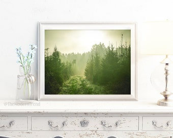 Forest Print, Forest Art, Forest Photo, Forest Photography, Dark Green, Green Decor, Tree Print, Modern Wall Art, Photography Wall Art