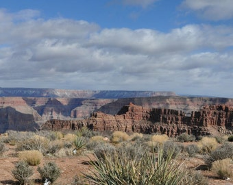 Grand  Canyon Panorama 8X24
