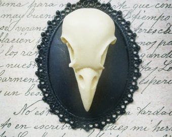 Resin skull Cameo pendant of bird-dark gothic steampunk-30 x 40 mm with chain