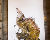 """hungry enough to devour the world - wolf  - Original Giclee Edition Print - 13x19"""""""