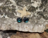 Blue Paua Shell Stud Earrings Earings Titanium Posts and Clutches Handmade in Newfoundland 6mm Round Hypo Allergenic