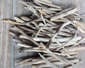 Assortment of 90 Driftwood Pieces for DIY Beach Theme Wedding Favors , Vase Filler , Natural Coastal Decoration & Craft Projects NS90