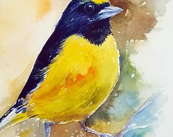 Yellow Bird Original Watercolor Painting Wall Art
