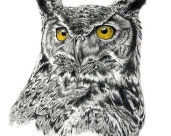 Owl Print Great Horned Owl Art