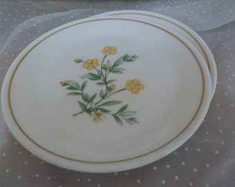 2 Small Royal Kent Plates with Yellow Flowers and Gold Trim, Staffordshire England