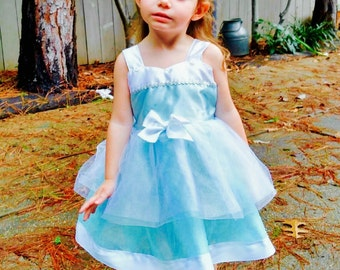 Cinderella Costume: Blue and White lined Princess Birthday Party Dress, vacation dress, tutu dress, easy on and off, adjustable, comfortable
