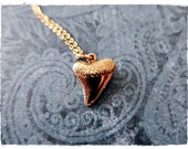 Gold Shark Tooth Necklace - Bronze Shark Tooth Charm on a Delicate 14kt Gold Filled Cable Chain or Charm Only