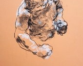 """Classical Male Figure Drawing - Drawing 416 - 9 x 12"""" charcoal and pastel on orange paper, original drawing"""