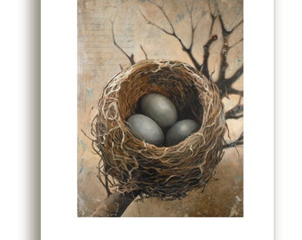 Three Bird Nest Art Print, Birds Nest With Three Eggs Giclee Print, Bird Nest Art Work, Bird Nest with Eggs, Square Wall Art Print, Nest Art
