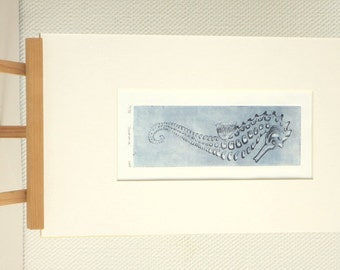 Original seahorse etching print from a limited variable edition illustration ocean creature hippocampus