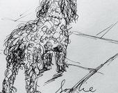 Custom knitted large poodle  dog - Sophie