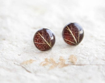 Real leaf stud earrings - resin jewelry with brown leaves - 925 Sterling silver posts - autumn fall finds