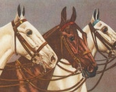 Condamy Hunters - 1900s Horse Art Postcards - An AHV Archival Editions © Set of Two from the Originals
