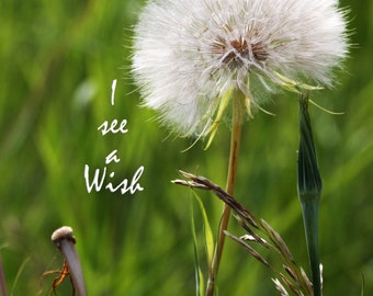 inspirational quote card and posters. Some see a weed, I see a wish. image #J0380