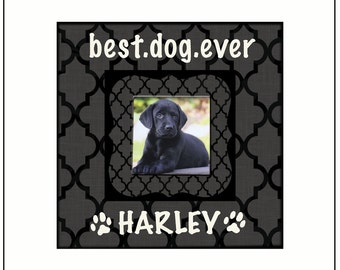 """Best.Dog.Ever ~ Customized Dog Frame ~ Personalized Cat Frame ~ Pet Memory Photo Frame ~ 8""""x8"""" Picture Frame for Animals"""
