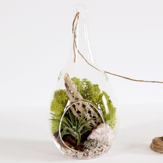 "Terrarium Kit - Rose Quartz and Pyrite with Chartreuse Moss - 8.5"" Teardrop"
