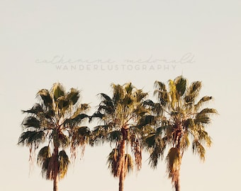 3 palms - Photographic Print -  Los Angeles, California, Photography, mint, Bohemian, boho, chic, blue,  Photograph, Wall, Art, Hanging,