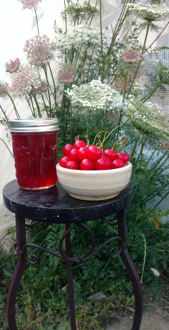 Sour Cherry Jam, pie cherry jam 8 oz jar small batch, hand crafted 8 ...