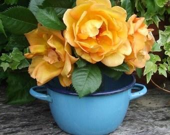 Vintage French Enamelware Bowl, Enamel Bowl, Blue Bowl, French Enamel, Blue Enamelware