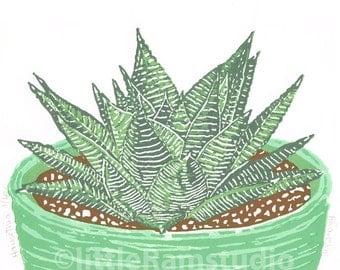 Succulent Plant Art Print - Original Limited Edition Linocut Reduction Print