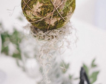 Fairytale Spanish Moss and Ball Centerpiece