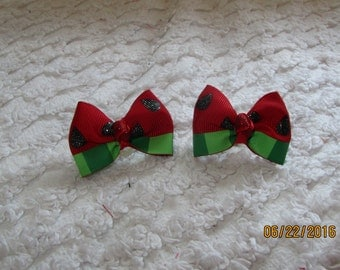 WATERMELON Dog Hair Bows