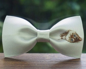 Handmade Lazy Little Cat (Felis silvestris )Bowtie Tie