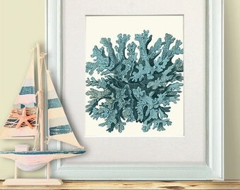 Sea coral wall art- Turquoise Coral 10 - Coral print nautical bedroom art turquoise decor turquoise wall art sea coral print sea coral décor
