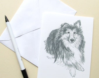 Sheltie notecards , 6, with envelopes