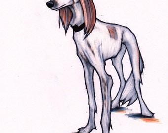 Saluki art, original colour pencil drawing, Sighthound art, original colour pencil art.