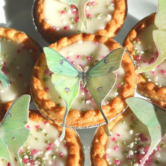 Edible Luna Moths Butterflies 3D