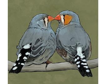 Zebra Finches colour art print