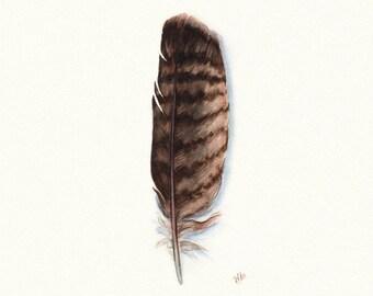 Golden Eagle Feather Art, Native American, Eagle, Watercolor Painting, Watercolor Feather, Feather, Indian, Eagle Feather, Eagle Print