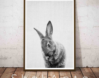 Woodlands Nursery Art, Black and White Baby Animal Print, Rabbit Print, Baby Bunny Print, Printable Black and White Bunny, Rabbit Art